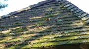 Maintain your composition shingle roof