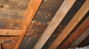 Roof Leaks and Mold